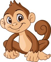 Member Jungle Club Management Software Monkey