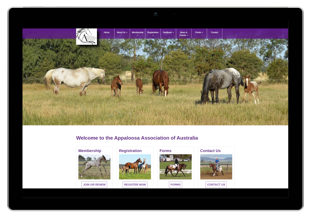 Appaloosa Association Of Australia Website