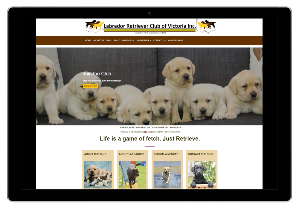 Labrador Retriever Club Of Victoria Website